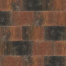 Abbeystones 20x30x6 cm Zomerbont
